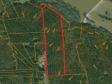 ea_2_Lee_County__NC__31_acres__TBD_Doyle_Cox_Rd__t