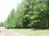 ea_3_Lee_County__NC__31_acres__TBD_Doyle_Cox_Rd_JP