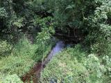 ea_3_Scotland_County__NC__37_acres__23801_Marston_