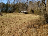 Alamance County, NC, 82.41 Acres, Willie Pace Rd 7