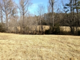 Alamance County, NC, 82.41 Acres, Willie Pace Rd 8