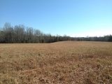 Alamance County, NC, 82 Acres, Willie Pace Rd 11