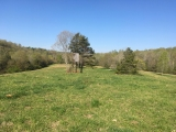 Moore County, NC, 57.7 Acres, Caviness Town Road 8