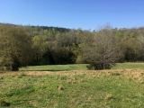 Moore County, NC, 57.7 Acres, Caviness Town Road 6