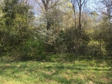 Moore County, NC, 57.7 Acres, Caviness Town Road 7