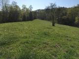 Moore County, NC, 57.7 Acres, Caviness Town Road 3