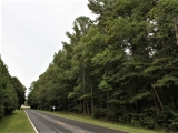 ea_Lee_County__NC__47_acres__TBD_Lee_s_Chapel_Road