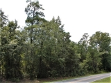 ea_Moore_County__12_acres__TBD_Red_Hill_Rd__Road2_
