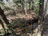 ea_Moore_County__12_acres__TBD_Red_Hill_Rd__Stream