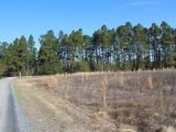 ea_Moore_County__NC__10_Acres__1653_Youngs_Road__F