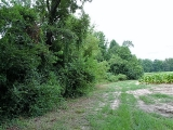 ea_Moore_County__NC__11_09_acres__TBD_Cranes_Creek
