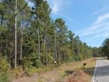 ea_Moore_County__NC__19_acres__TBD_Joel_Road__Road