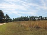 ea_Moore_County__NC__19_acres__TBD_Joel_Road__open
