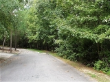 ea_Moore_County__NC__24_acres__TBD_Buggy_Drive__Ro