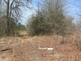 ea_Moore_County__NC__27_Acres__Currie_Mill_Road__I