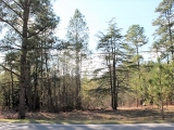 ea_Moore_County__NC__2_Acres__Carthage_Road__Stree