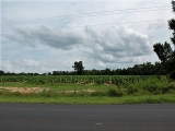 ea_Moore_County__NC__32_22_Acres__TBD_NC_24_27__To