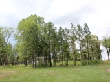 ea_Moore_County__NC__3_acres__TBD_S_Plank_Rd___13_