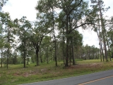 ea_Moore_County__NC__3_acres__TBD_S_Plank_Rd___14_