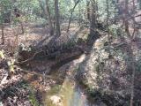 ea_Moore_County__NC__5_acres__TBD_Equestrian_Lane_