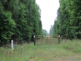 ea_Moore_County__NC__8_acres__TBD_Letlough_Rd_6_JP