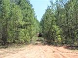 ea_Moore_County__NC__90_acres__TBD_Plank_Road__ent