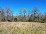 ea_Moore_County__NC__9_acres__NC_705__Hardwoods