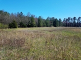 ea_Moore_County__NC__9_acres__NC_705__Side
