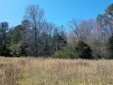 ea_Moore_County__NC__9_acres__NC_705__Side2