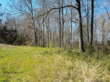 ea_Moore_County__NC__9_acres__NC_705__Side3