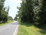 ea_Scotland_County__NC__134_acres__TBD_Hasty_Road_