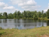Moore County, NC, 93 Acres, 520 Murdocksville Road