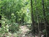 ea_Lee_County__NC__34_acres__TBD_Buckhorn_Road__Tr