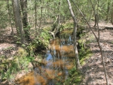 ea_Moore_County__NC__90_acres__TBD_Plank_Road__Cre