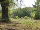 ea_Richmond_County__NC__24_acres__TBD_McGee_Road__