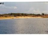 ea_beachpic2